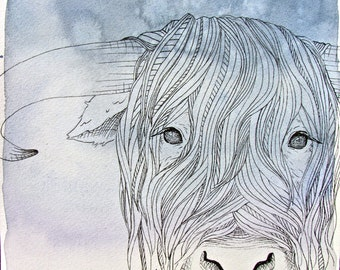 Highland Cow - Animal Illustration - Archival Art Print
