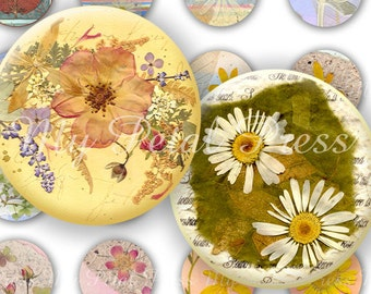"""Digital Download Pressed Flower Art Tranquil Garden 48 each 1"""" Rounds for Crafters"""