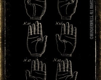 """Palm Reading Art Print Fortune Teller Old Woodcut Life Lines High-Quality, Archival 8"""" x 10"""" Print: Life Lines Map Two"""