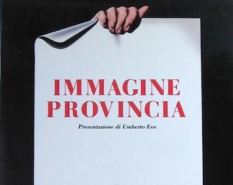 Vintage Italian Poster Book - Immagine Provincia - Coffee Table Book - Graphic Design Book - Typography Art - Poster Art - Italian Art Book