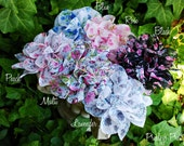 Chiffon Flower Clip - Floral Print Rose - Photo Prop - Toddler, Girls, Adult - YOU CHOOSE ONE
