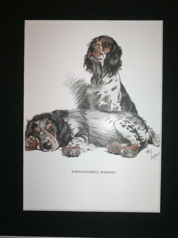 Tortoiseshell spaniels Signed mounted Vintage 1930 Cecil Aldin dog plate print Unique Christmas Birthday gift, Xmas, Thanksgiving present