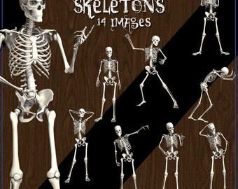 Skeletons Digital Clip Art - 14 Boney Images for Scrapbooking, Birthday Card Making etc - Instant Download