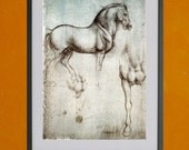Study of Horses by Leonardo da Vinci, 1490 - 8.5x11 Poster Print - also available in 13x19 - see listing details