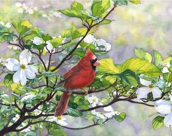 Cardinal in dogwood – Etsy