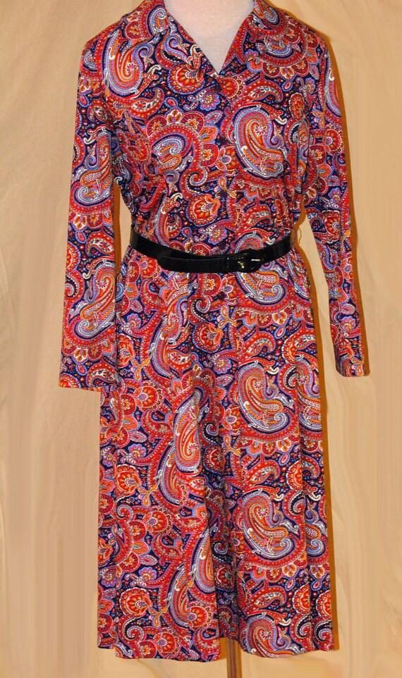 Paisley Paradise- Vintage Colorful Dress Flutterbye Retro 1970s Adorable Collared