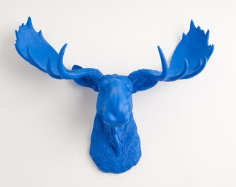 Faux Taxidermy Moose - The Maxwell -  Resin Moose Head- Moose Resin Blue - Chic Blue Home Decor by White Faux Taxidermy Animal Sculptures
