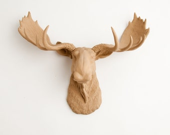 Moose Head Faux Taxidermy, The Agatha tan resin faux moose head hanging wall decor by White Faux Taxidermy