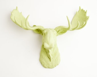 Faux Taxidermied Moose Head - The Nico - Mint Green Resin Moose Head- Fake Moose Resin Mint Faux Taxidermy- Chic & Trendy