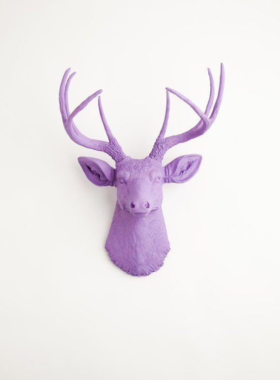 Faux Taxidermy - The Emma - Lavender Resin Deer Head- Deer Antlers Mounted- Faux Head Wall Mount by White Faux Taxidermy Wall Decor