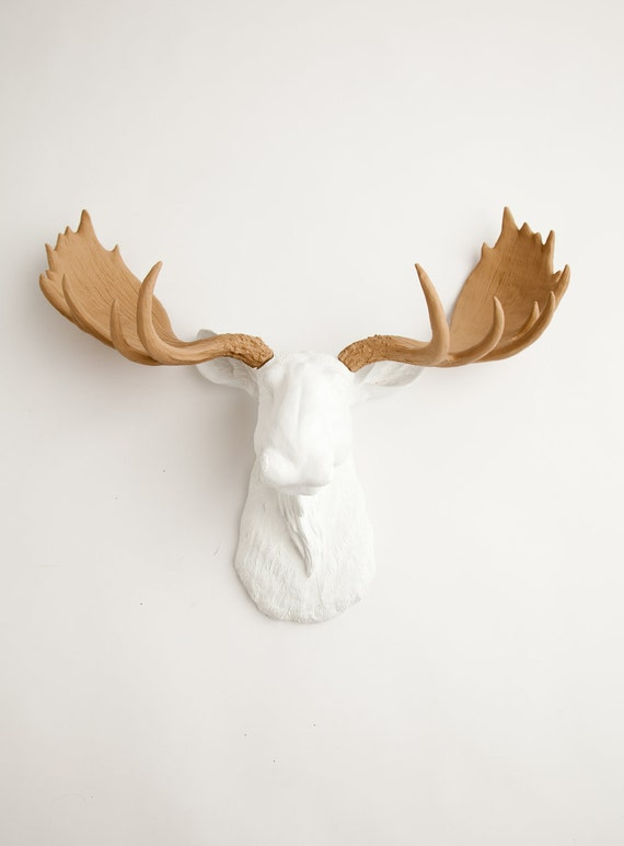 Faux Taxidermied Moose - The Adolpho - White w/ Tan Antlers Resin Moose Head- Chic Wall Hangings by White Faux Taxidermy Animal Wall Art