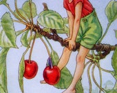1930s CHERRY TREE FAIRY Cicely Mary Barker Print Ideal for Framing