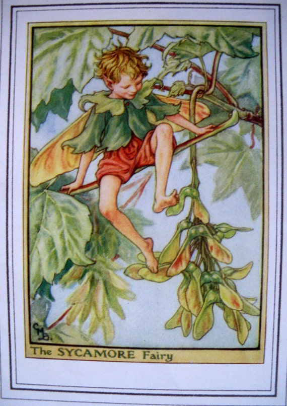 1930s The Sycamore FAIRY CICELY Mary BARKER Ideal for Framing