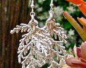 Silver Dipped Cypress Leaf Earrings