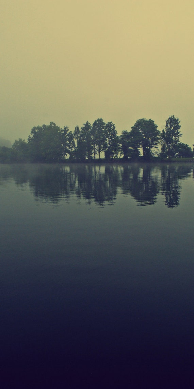 Morning Mist on Lake Photograph 12x24 Print