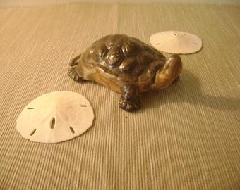 Vintage Art Pottery - Turtle Figurine Pottery - Realistic Weller Muskota Style Majolica Turtle - Vintage Art Pottery - FREE SHIPPING