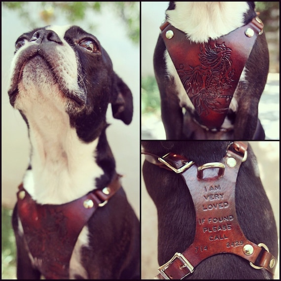 Leather Dog Harness - Custom Leather Hand Tooled Dog Harness - Balanced for Most Comfort - Personalized with Pets Name - Phone Number & More