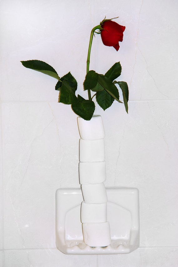 Romantic Marshmellow Rose for Dad or Lover (RARE)