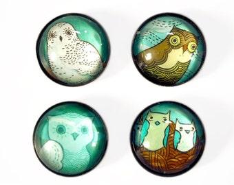 owl decor REFRIGERATOR MAGNET SET, kitchen magnets, owl magnets, owl kitchen decor, super strong magnets, gift for mom, cute owl stuff
