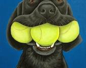 Black Labrador Dog and Tennis Balls Fine Art Print 8x10, by Nesbitt