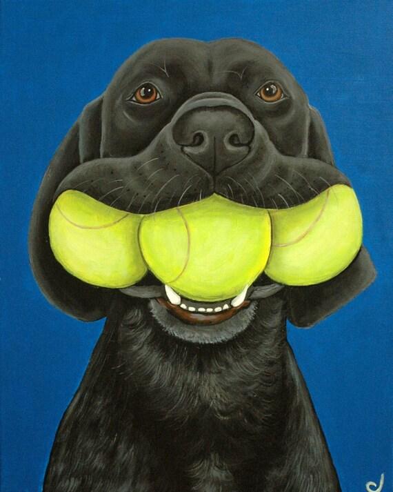 Black Labrador Dog Three Tennis Balls Fine Art Print by Carol Iyer