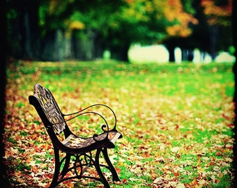 Autumn in New England, Empty Bench, Landscape Photography, Fall Photo, Colorful Foliage, Green and Brown, New Hampshire, New England Scenic