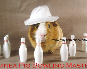 """Guinea Pig BOWLING MASTER Portrait - Limited Edition 8x10"""" Glossy Photograph"""