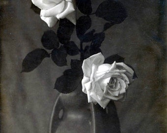 White Roses in Ceramic Vase Still life Black and White Vintage photo print
