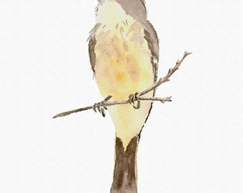 Phoebe Print from My Original Watercolor Painting, Yellow Bird Print Art Wall Decor, Eastern Phoebe Bird Home Decor Art Print