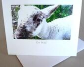 Greeting Card Spring Baby Lamb Barnyard Little Princess