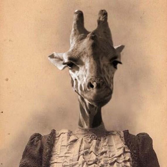 Georgia the Giraffe 5x7 Anthropomorphic print