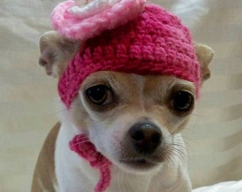 Dog hat crocheted, wool  Pink with White and Pink flower, in small or xsmall