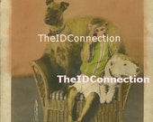 Circus Dogs Terrier  Monkey vintage photo  Electronic Digital Scan 1890's-1920's Carl Hagenbeck and Great Wallace Shows 53i