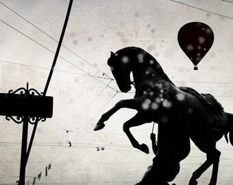 Horse, Horse Photo, Horse Photography, Animals Photography, horse art, Animal decor, hot air balloon, Animal photography, Black and white
