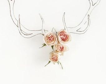 deer antler_no_3