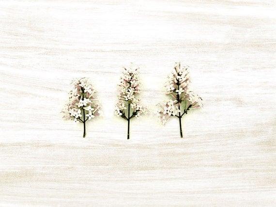 Whimsical Art Print Lilac Trees Natural History Pink Pastel Botanical Woodland