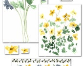 Floral Spring Clip Art with 8 Matching Digital Papers use for Journals, Scrapbooking, Hanging Artwork, Tags, Cards, Invitations (No. 101)