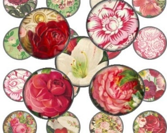 Rose Garden Valentine 1 In Circle Digital Collage Sheet bottlecaps jewelry pendant ring clear glass domes round bubbles - U print 300dpi jpg