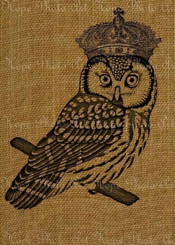 King Owl Royal Crown Fabric Image Transfer Digital By