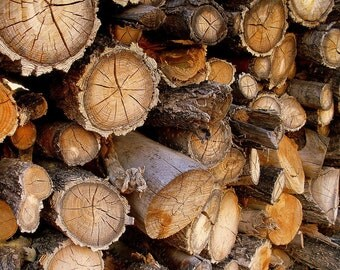 Wood Logs Firewood Rustic Stack Wood Weathered Other Sizes Rustic Trees Brown Rust Gray Rustic Cabin Lodge Photography