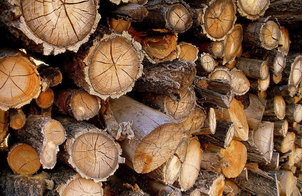 Wood logs firewood rustic stack weathered other sizes