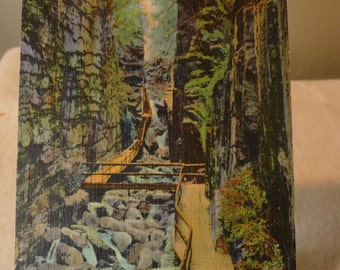 Vintage Postcard - A Quiet Place in the Trees  - New Hampshire - 1950s original postcard - Franconia Notch