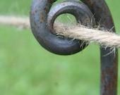 Fiddlehead Stake, garden stake, rustic wedding, path marker, garden, stake, pathway, rustic, driveway marker, Christmas, Christmas lights
