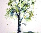 Aspen Tree watercolor Painting - giclee print - lime green springtime - fine art 8x12