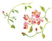 Flower painting, pink, green wall decor, flower watercolor, flower art print, art for girls room - Magenta Sunshine - 8x10 - LightheartedDreamer