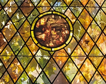 The Sun Shines Through Autumn Foliage and a Stained Glass Window  A Spiritual Fine Art Photo