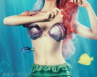 Ariel F Little Mermaid Costume Adult  (Foam Shell Bra ONLY)