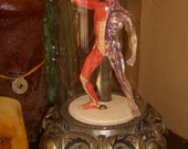Lighted Medical Muscle Man Under Glass Cloche
