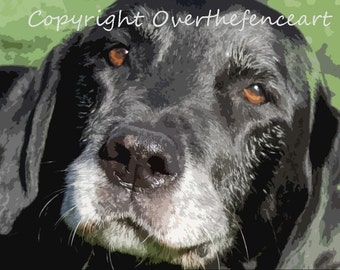 Animal Photography Fine Art Photography Black Labrador Smiles for Camera 8x10 print Photograph