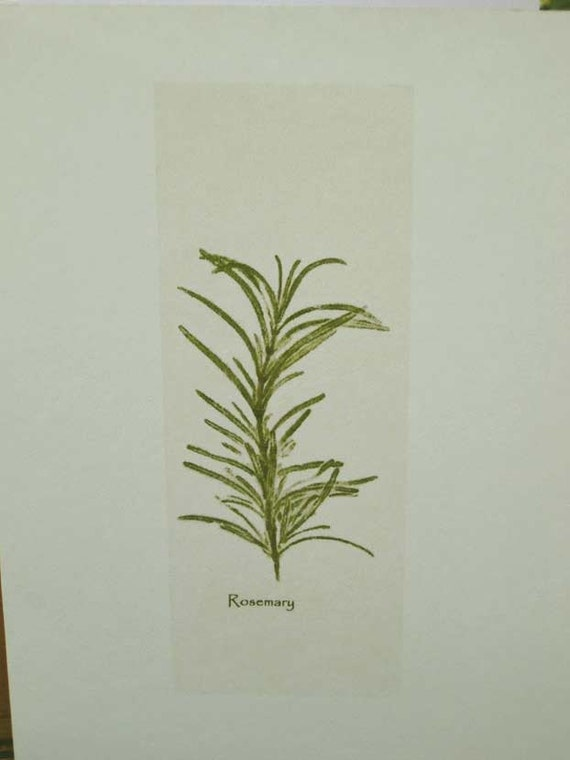 Herbal stationery, rosemary notes & pkg.of dried rosemary, herb print, gift for chef, gardener, wedding invitations, favors, Mother's Day